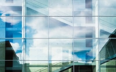 Is Corporate Transparency the New Norm?